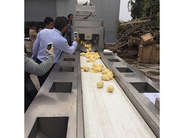 ماكينة تحضير وتقشير البطاطس